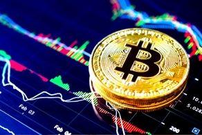 سقوط تازه واردها با ورود به بازار رمز ارزها