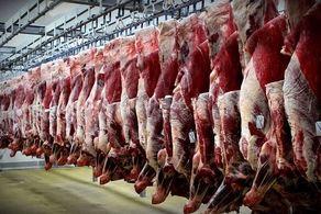 ارتباط افزایش آمار کرونا با واردات گوشت یخ زده!