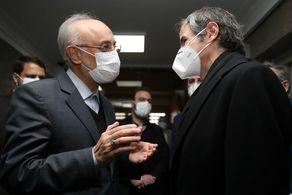 مدیر کل آژانس با صالحی دیدار کرد