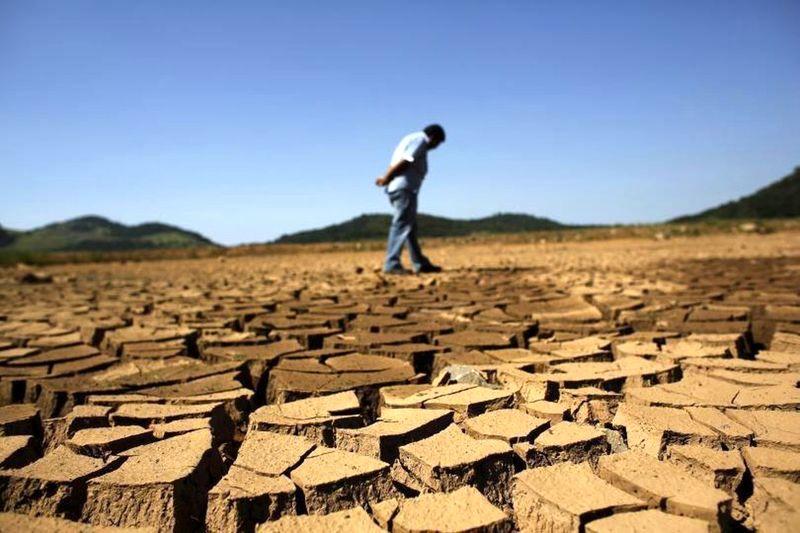 آزادسازی کشت «آب بر» در یکی از خشکترین سالها