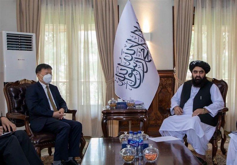 برای همکاری با طالبان آمادهایم!