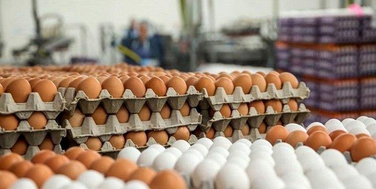 یمت هرشانه تخم مرغ در بازار