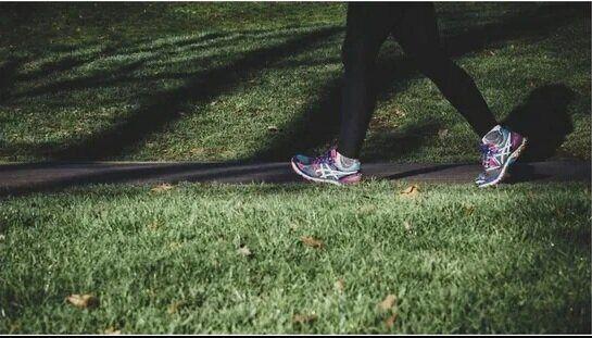 قبل و بعد از پیاده روی چه خوراکیهایی را باید خورد؟