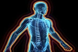 خواندنی های جالب در مورد بدن انسان
