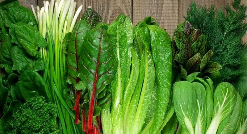 این مدل سبزیجات در تقویت عضلات موثرند!