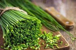 این سبزی تمام عفونت های بدن را نابود می کند